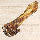 Schecker Pferdeknochen XXL - Länge ca. 35 cm - große