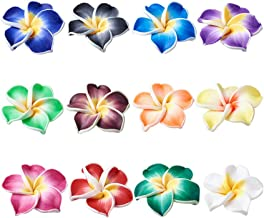 Craftdady 200Pcs 12x8mm Mixed Colors Handmade Polymer Clay Plumeria Flower Beads DIY Jewelry Necklace Bracelet Earring Craft Making Colorful Side Drilled Spacer Beads with 2mm Hole
