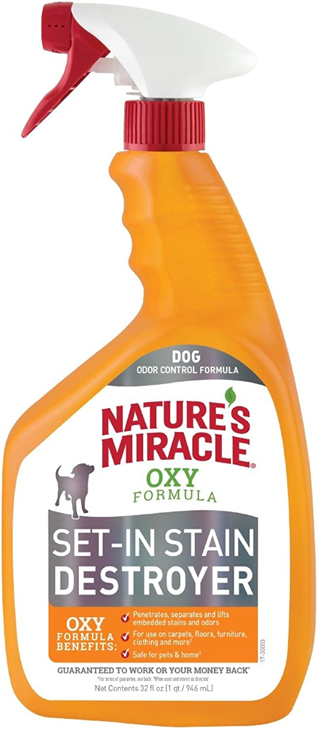 Nature's Miracle Oxy Formula Setin Stain Destroyer, orange Scent