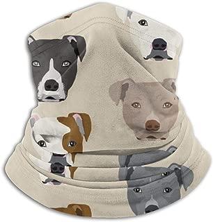 pitbull headwear