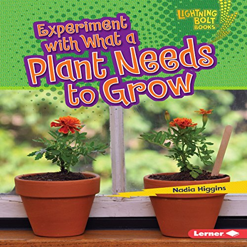 Experiment with What a Plant Needs to Grow copertina
