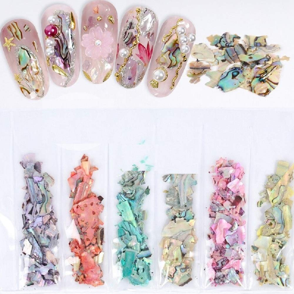 6 Grids Pack Beauty Color Abalone Seashell Outlet sale feature Frag Changing Natural New color