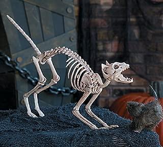 full size skeleton halloween
