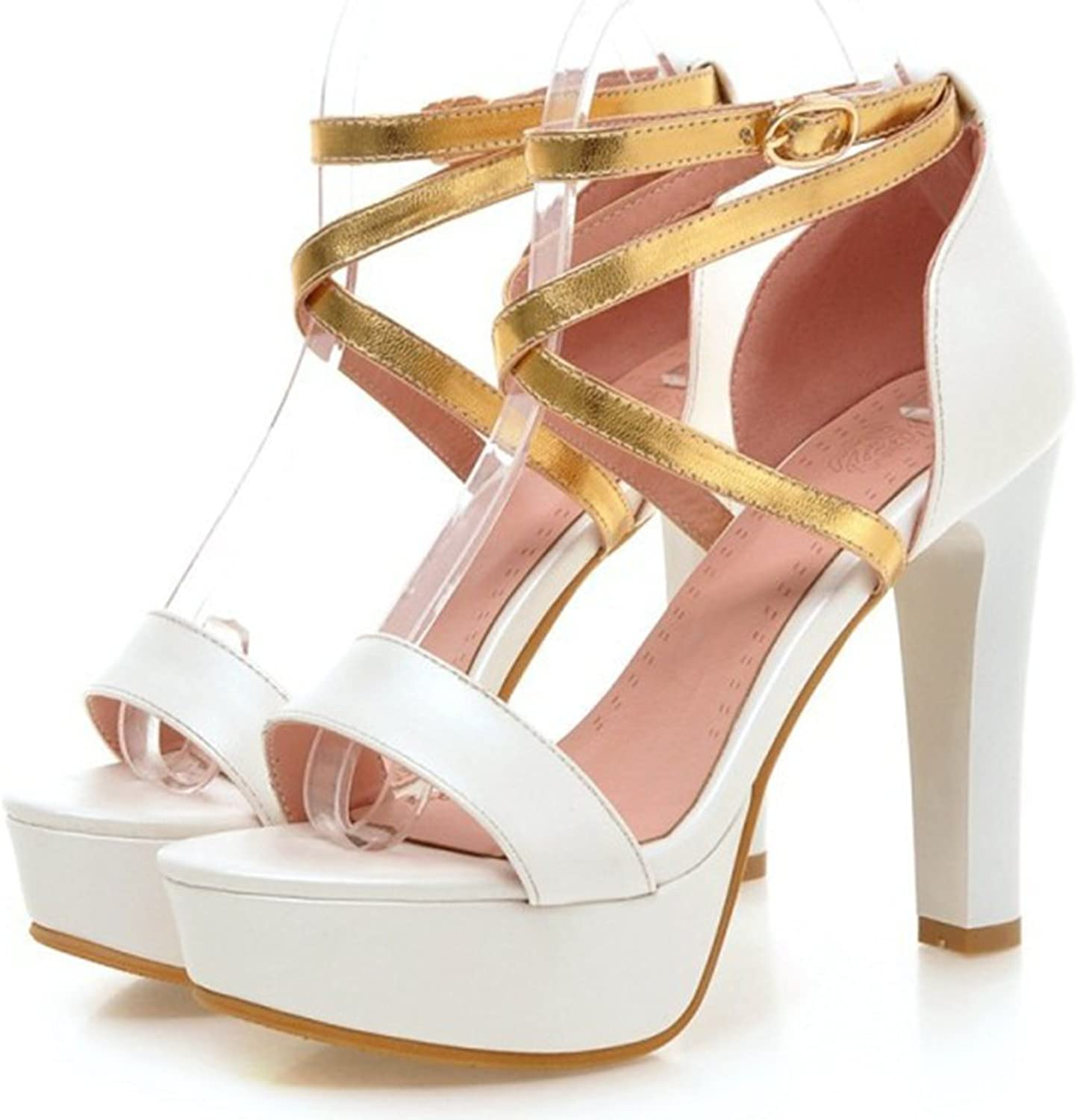 Colnsky Women's Sexy Open Toe Ankle Strap Buckle Work shoes Chunky Super High Heel Platform Sandals