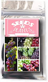 Best concord grapes have seeds Reviews