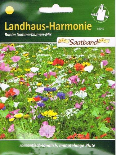 N.L.Chrestensen 52040, Ländhaus Harmonie, Bunter Sommerblumen-Mix, Mehrfarbig