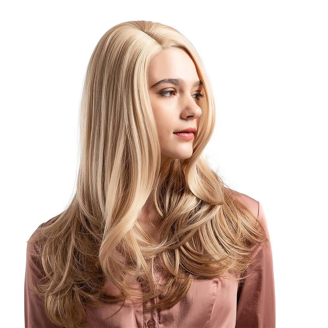 ネスト訴える勉強するウィッグ女性黄金の大きな波状の巻き毛の高温シルクウィッグ22インチ