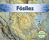 Fósiles (Abdo Kids: ¡súper Geología!)