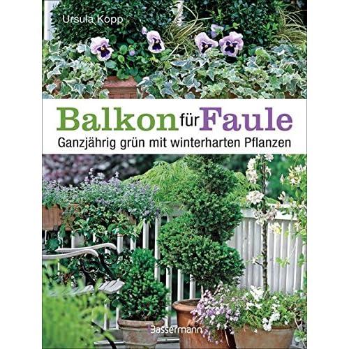 Balkonpflanzen Winterhart Amazon De