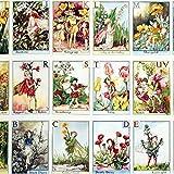 Flower Fairies ABC MM636 – Baumwolle – Panel