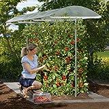 Beckmann KG PSN2 Schutzdach für Pflanzen Größe 2 200 x