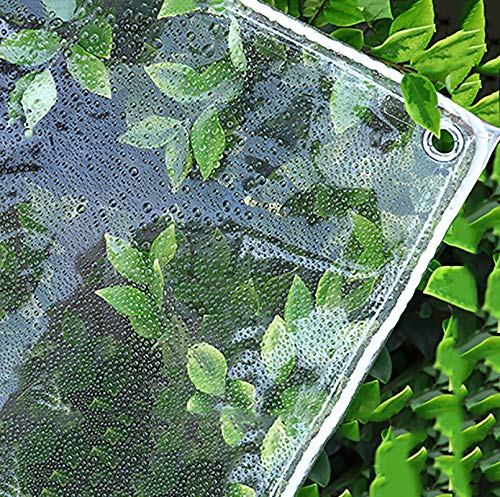 N / A Tarps Waterproof Transparent Tarps w/Grommets, Outdoor Terrace Tarpaulin, PVC Tear Resistance Exterior Pergola Plant Cover, 500g/m²(Size:2×3m)