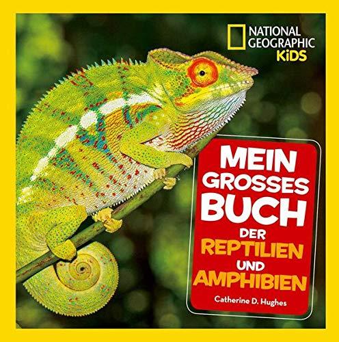 Mein großes Buch der Reptilien und Amphibien: National Geographic Kids