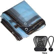 Griselda Curme - Lona protectora para invernadero, resistente al agua, cubierta protectora de lona, para toldo, barco, caravana o alberca, con 10 pelotas, ojales y bordes reforzados, azul
