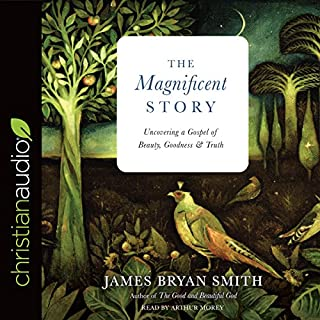 The Magnificent Story cover art
