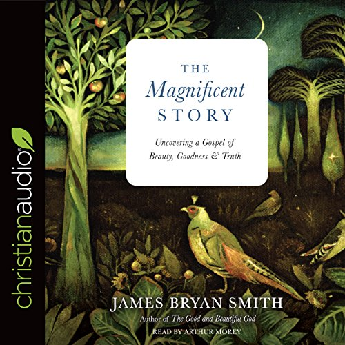 The Magnificent Story Audiobook By James Bryan Smith cover art
