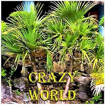 Crazy World (feat. Jimmy Goings, Steffen Kuehn, Tony Baker, Dan Gazzano & Eddie Jimenez)