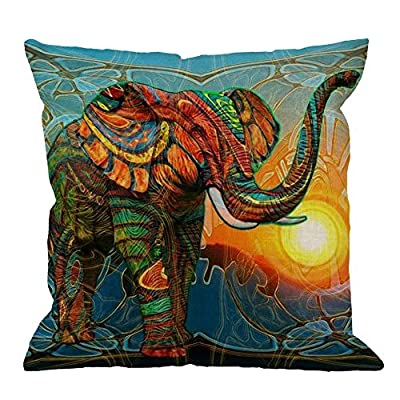 HGOD DESIGNS Throw Pillow Case Colorful Picasso Cotton Linen Square Cushion Cover Standard Pillowcase for Men Women Kids Home Decorative Sofa Armchair Bedroom Livingroom 18 x 18 inch