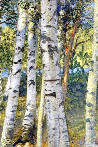 Posterlounge Leinwandbild 40 x 60 cm: Birkenstämme von Carl Larsson/ARTOTHEK - fertiges Wandbild, Bild auf Keilrahmen, Fertigbild auf echter Leinwand, Leinwanddruck