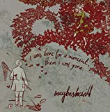 Songtexte von Maybeshewill - I Was Here for a Moment, Then I Was Gone