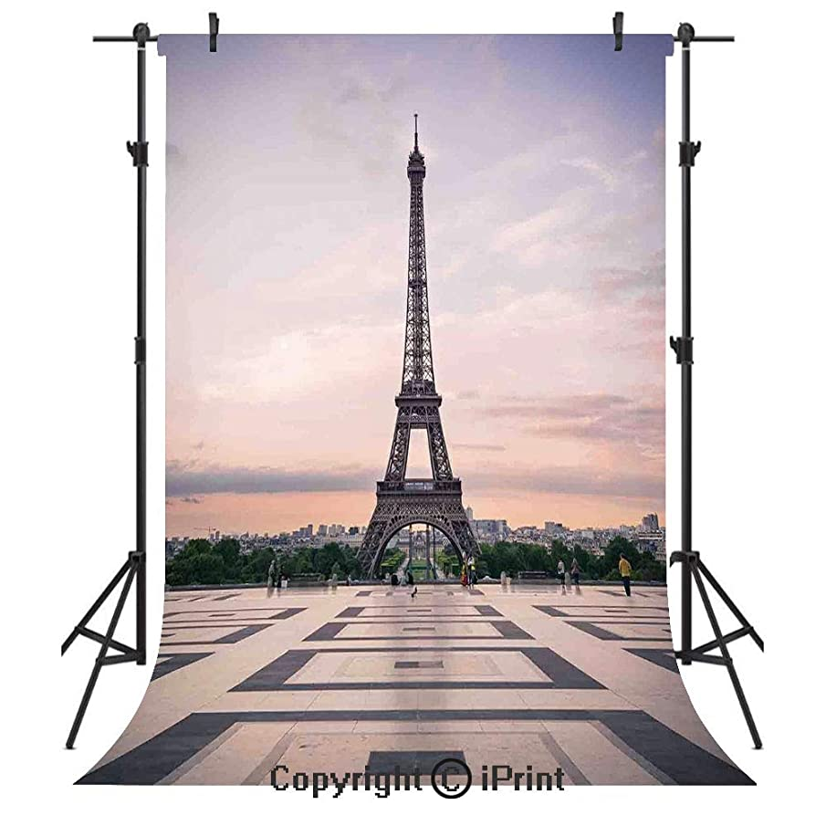 Paris City Decor Photography Backdrops,Trocadero and Eiffel Tower at Sunshine Paris Skyline Historic Landscape View,Birthday Party Seamless Photo Studio Booth Background Banner 10x20ft,