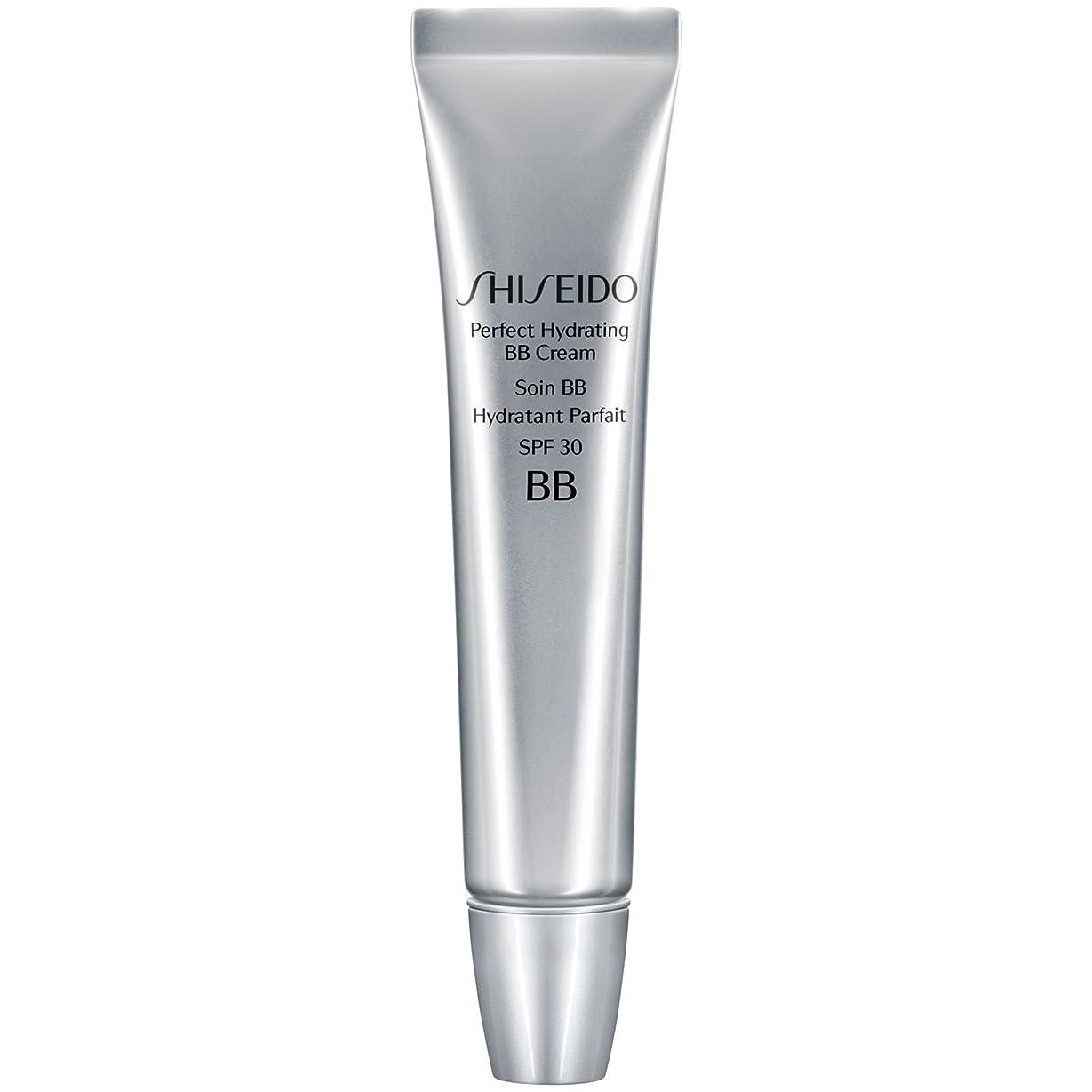 志すエアコン時期尚早[Shiseido ] 資生堂完璧な水和BbクリームSpf 30 30ミリリットル媒体 - Shiseido Perfect Hydrating BB Cream SPF 30 30ml Medium [並行輸入品]