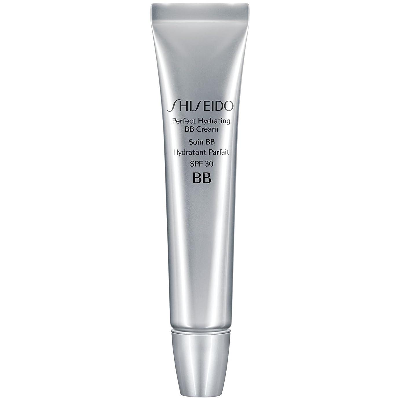 に同意するヘルメット海岸[Shiseido ] 資生堂完璧な水和BbクリームSpf 30 30ミリリットル媒体 - Shiseido Perfect Hydrating BB Cream SPF 30 30ml Medium [並行輸入品]