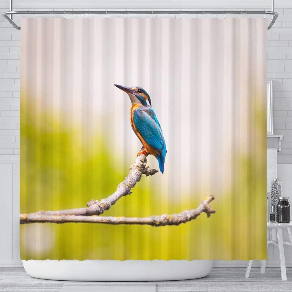 Pawlice Free Shipping Cheap Bargain Gift Lovely Kingfisher Bird Shower Print wholesale Curtains