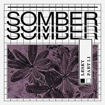 Somber Pt. 1