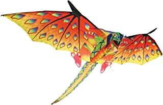 Best x kites dragon Reviews