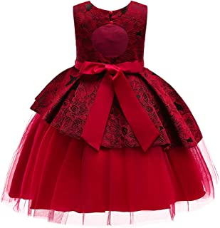 Flower Girl Pageant Backless Dress Girls Elegant Tulle Wedding Princess Gown Party Dresses