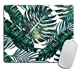 Tropical Palm Leaves Mouse pad, Hawaii Beach Jungle Leaves Mouse pad Palm Leaves Floral Mousepad Green Tropical Leaves Mouse Mat Mouse Pad Office Mousemat Tropics Mouse Pad Accessories for Her