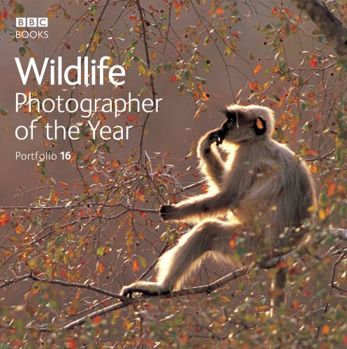 Image OfWildlife Photographer Of The Year Portfolio 16