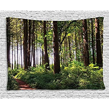 Ambesonne Farm House Decor Tapestry, Pathway in a Shady Forest of Bushes and Thick Trunks Grass Unique Wild Life Scenery, Wall Hanging for Bedroom Living Room Dorm, 80 W X 60 L, Green and Brown
