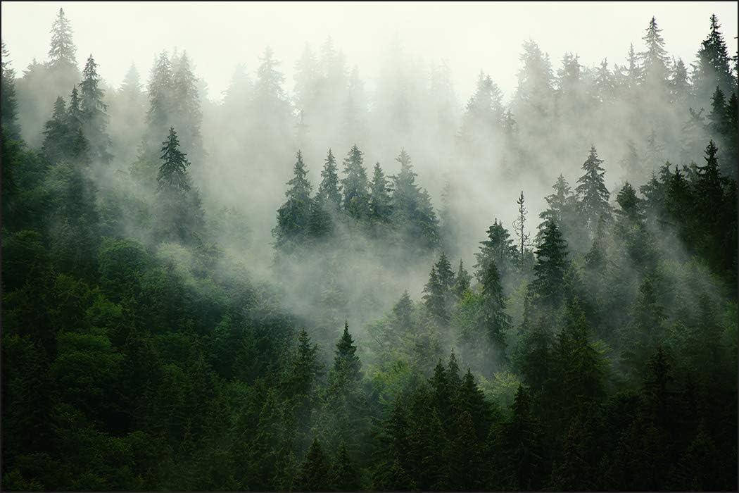 Toile Photos Wolf Nature Forêt Brouillard Art pression peintures murales XXL salon 5 pièces