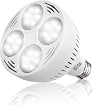 LED Pool Bulb White Light, Bonbo 12V 50watt 6500k Daylight Swimming Pool LED Bulb E26 Base 300-600w Traditional Bulb Replacement for Most Pentair Hayward Light Fixture