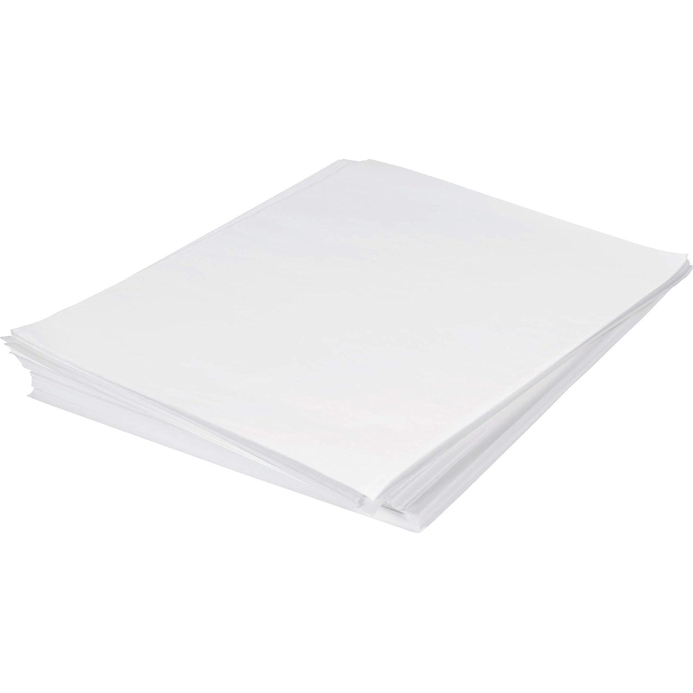 Poly Bag Philadelphia Mall New item Guy Economy Tissue Paper x 15