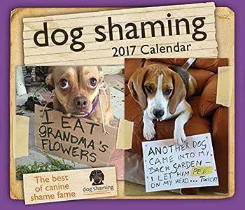 Best dog shaming photos Reviews