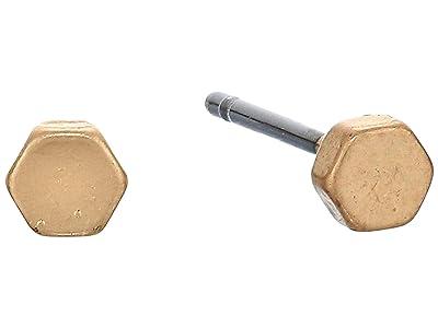 AllSaints Hex/Bar Stud Earrings Set (Warm Brass) Earring