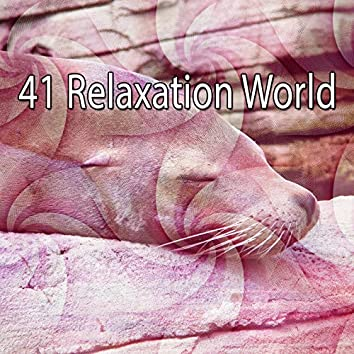 41 Relaxation World