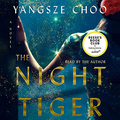 The Night Tiger  By  cover art