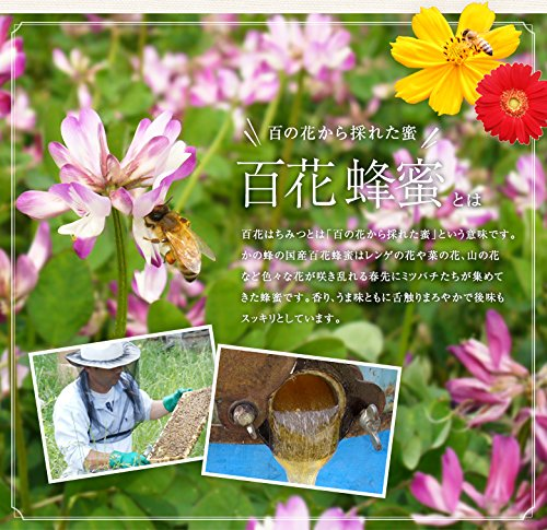 『はちみつ 専門店【かの蜂】 国産 百花 蜂蜜 500g 完熟 の 純粋 蜂蜜 (とんがり容器)』の3枚目の画像