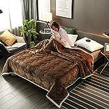 ZKbed Decke, dick, Korallen-Teppich, Doppelschicht, Flanelldecke, einfarbig, gesteppt, Freizeitdecke, 120 x 200 cm, Kaffeebraun