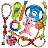 TINGERIA Giochi per Cani resistenti, Set di 10 Giocattoli per Cani Cuccioli, Gioco Cane piccoli interattivi, adatto a Cani di piccola e media taglia