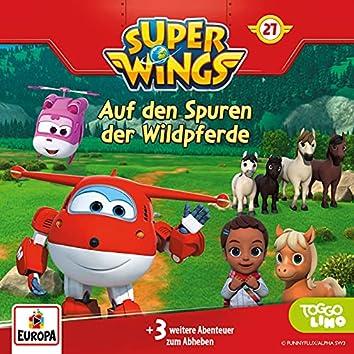 027/Auf den Spuren der Wildpferde