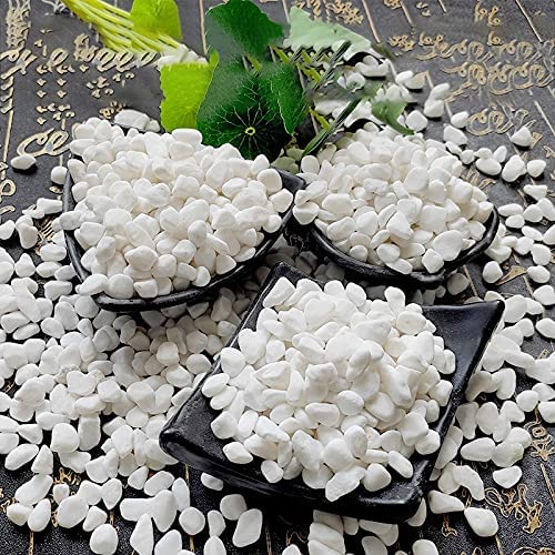 KAIFENGJUBIAN Garden Pebbles Department store Bonsai Courtyard Paving Small Stone Low price