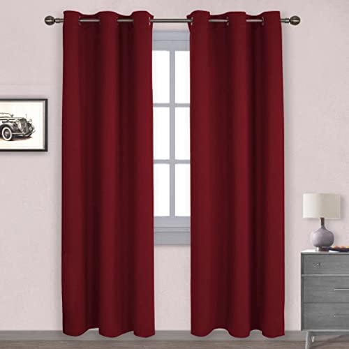 Thermal Curtains for The Living Room: Amazon.com
