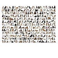 大人のためのパズル2000ピースすべての種類の犬ジグソーパズル大人のパズルジグソーパズル大人のための2000ピース-70x100cm