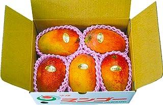 JAおきなわ 沖縄産完熟 マンゴー 家庭用 訳あり 1.5kg(3~6玉)