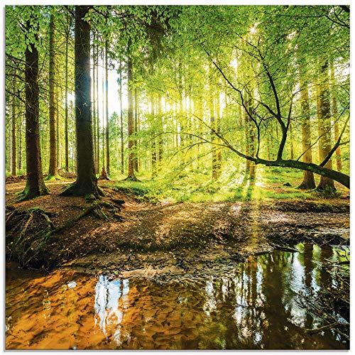 Artland Glasbilder Wandbild Glas Bild einteilig 30x30 cm Quadratisch Wald Natur Landschaft Bäume Bach Sonne Frühling T9IO